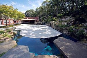 bache piscine forme libre